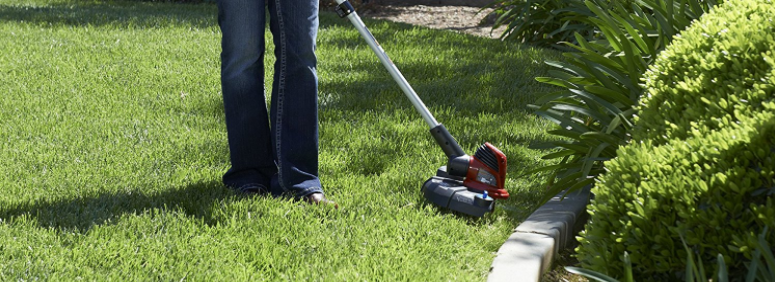 Best Toro String Trimmer